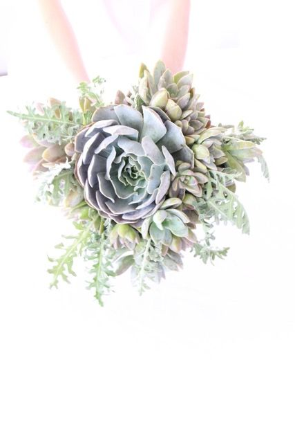 Considering succulents for your bridal bouquet?  What an eco way to go as you can plant these later as a permanent memory of your special day - Designed  Grogreendesign.com in Thousand Oaks
