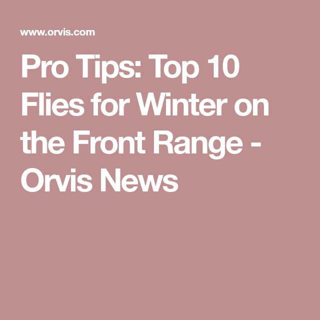 Pro Tips: Top 10 Flies for Winter on the Front Range - Orvis News