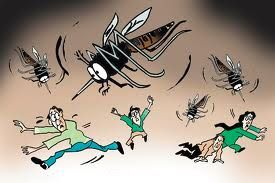 Dengue is a viral infection that leads to fever and in some cases bleeding. When a person starts bleeding he is said to suffer from dengue hemorrhagic fever (DHF). The infection is caused by four different but related strains of dengue virus. Hence a person can contact dengue more than once as infection by one strain of virus gives no immunity against infection from another strain.