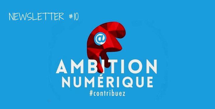 conseil national du numerique_ambition numerique_bonnet phrygien                                                                                                                                                                                 Plus