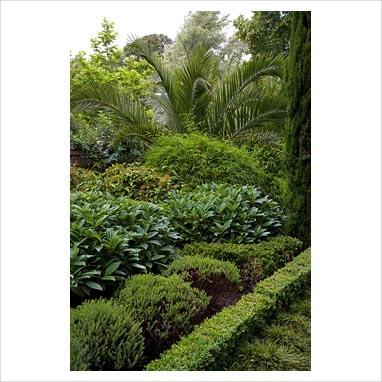 63 best garden images on pinterest home ideas for Evergreen landscapes christchurch