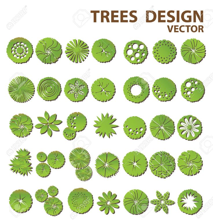 How to draw landscape design plot plans google search for Plant landscape design