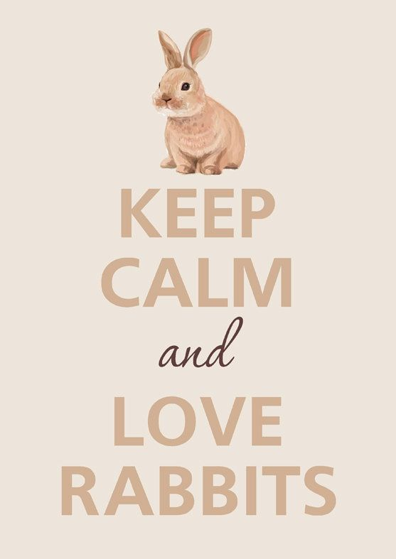 Keep Calm & Love Rabbits #keepcalmandloverabbits www.gmichaelsalon.com  @Emmie Darland I loovvee this!! Thanks for sharing!
