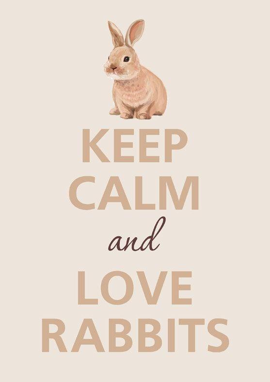 Keep Calm & Love Rabbits #keepcalmandloverabbits www.gmichaelsalon.com  @Emmie Darland I loovvee this!! Thanks for sharing!