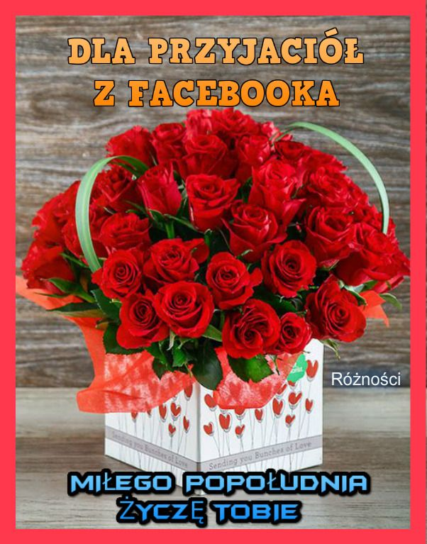 Milego Popoludnia Red Roses Beautiful Flowers Images Good Morning Images Flowers