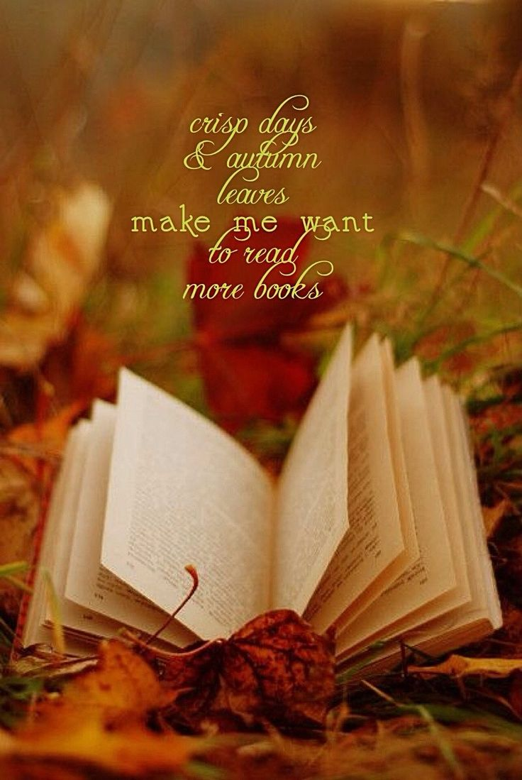 206 Best Nooks Images On Pinterest: 187 Best Fall Quotes Images On Pinterest
