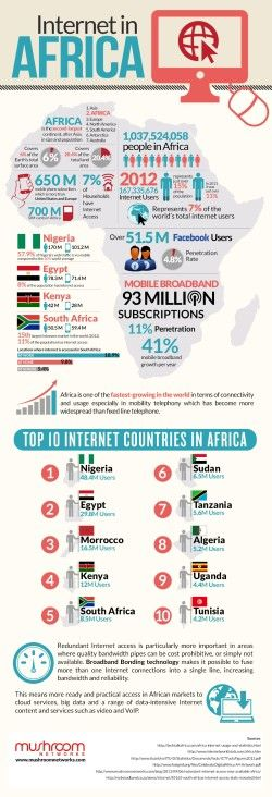 Top 10 Internet Countries in Africa 2014