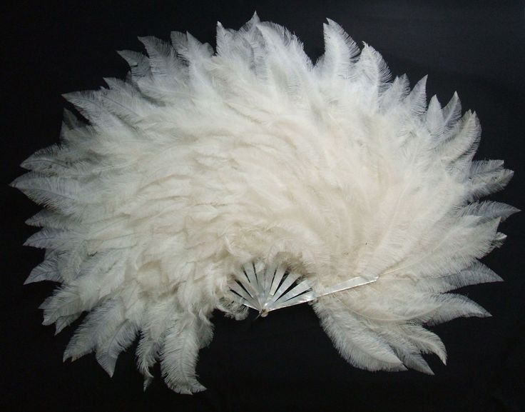 1920 - Ostrich feather hand fan