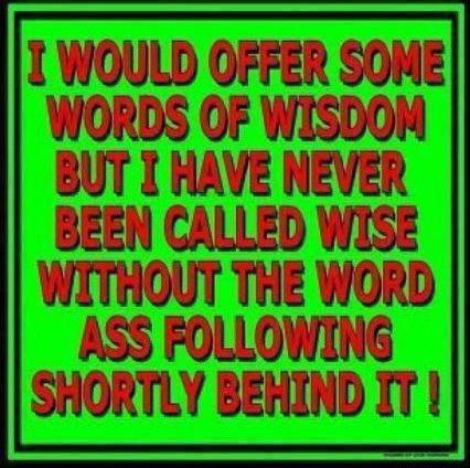 I would offer some words of wisdomWords Of Wisdom, Laugh, Wordsofwisdom, Hee Hee, Funny Quotes, Funny Stuff, Humor, Things, True Stories