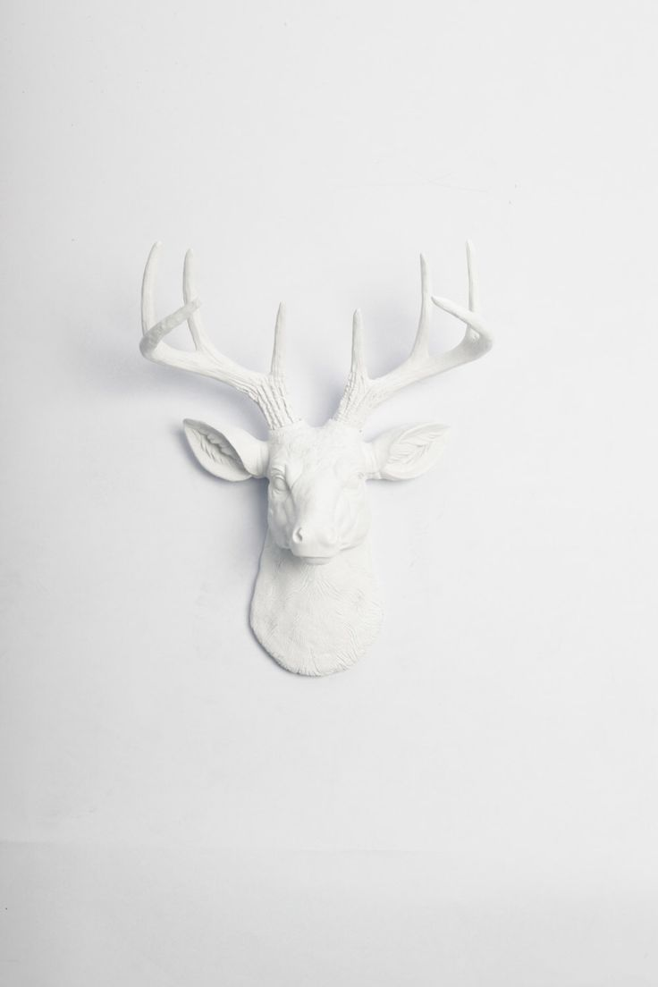 White Faux Taxidermy Original Faux Deer Head Wall Mount- The MINI Templeton - White Resin Deer Head- Mounted Stag & Antlers Faux Animal Head by WhiteFauxTaxidermy on Etsy https://www.etsy.com/listing/155419852/white-faux-taxidermy-original-faux-deer