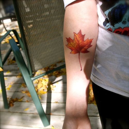 A Sugar Maple leaf. Why a Sugar Maple leaf? No, I'm not Canadian-that I know of.    The Sugar Maple is the state tree of Wisconsin.  Autumn is my favorite time of year.