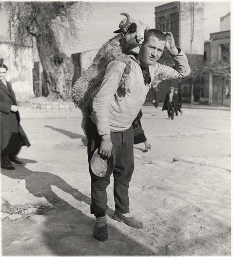 Nicholas V. Artamonoff Collection | Man with sheep on his back