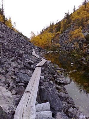 Isokuru, Pyhätunturi, Finland. http://lukijat.iltasanomat.fi/6/9203/20