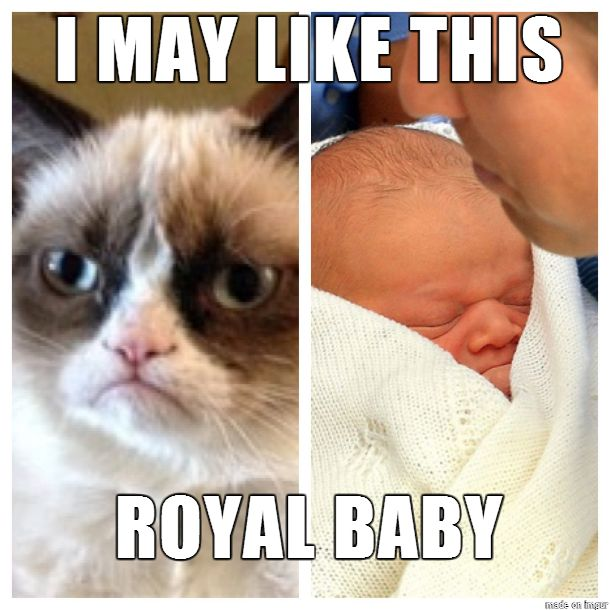 Even Grumpy cat likes the Royal Prince!!