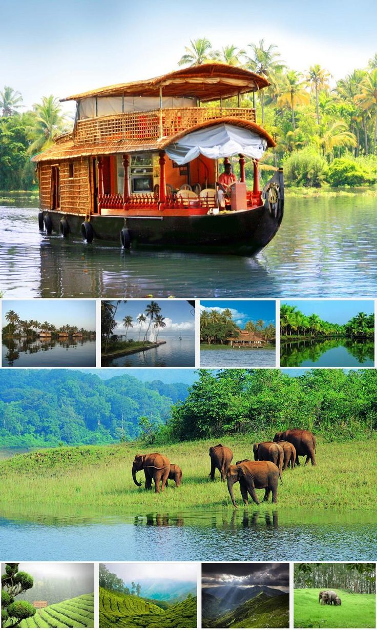 Kerala Tour9n/10d  - Tours From Delhi - Custom made Private Guided Tours in India - http://toursfromdelhi.com/kerala-tour-package-9n10d-cochin-kovalam-alleppey-kumarakom-thekkady-munnar/