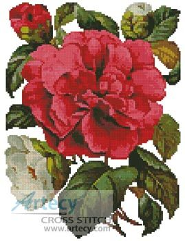 Pink Camellia Cross Stitch Pattern http://www.artecyshop.com/index.php?main_page=product_info&cPath=37_39&products_id=372