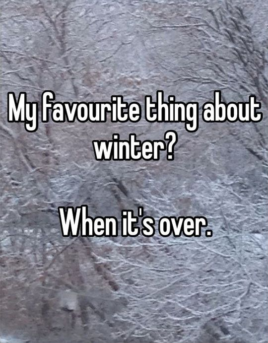 I hate winter. After Christmas is over, winter is the most miserable three months of the year.