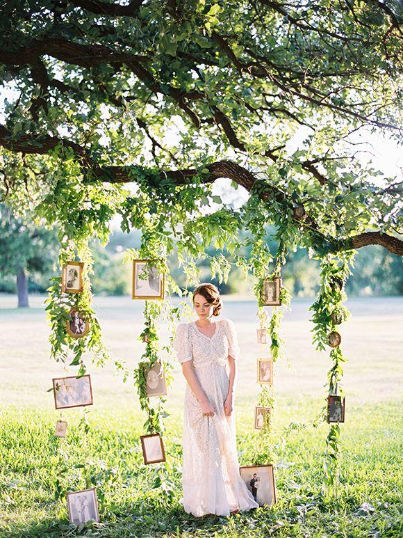 Mariage: Des cadres dans les arbres