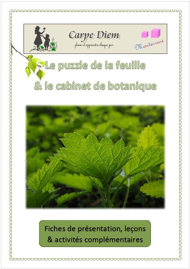 Sciences de la vie - Le puzzle de la feuille et le cabinet de botanique (Carpe Diem)
