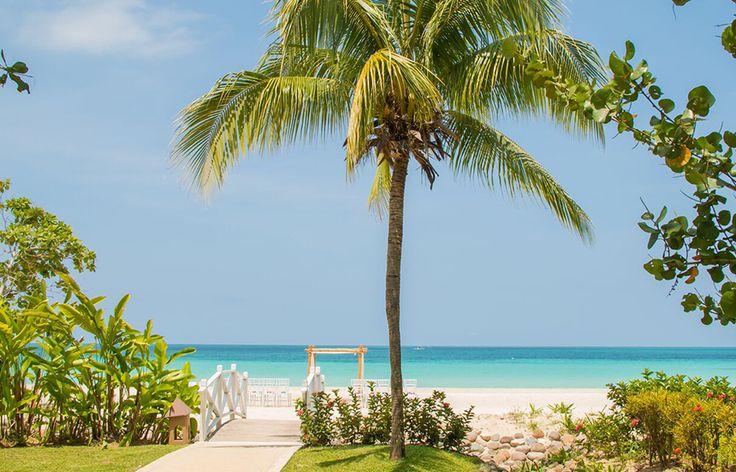 156 Best Beach Wedding Inspiration Images On Pinterest