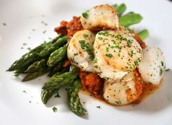 Pan Seared Sea Scallops with Tomato Fennel Ragout -Anthony Armstrong