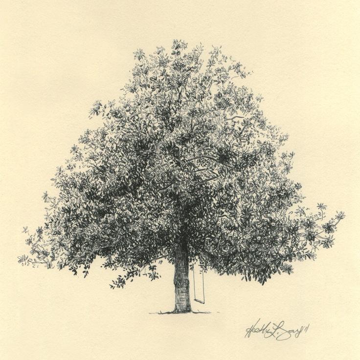 Magnolia Tree Drawing
