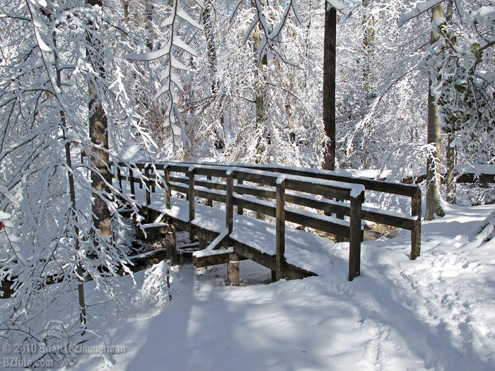 Chester, VA | Winter Wonderland, Point of Rocks Park, Chester, VA, USA