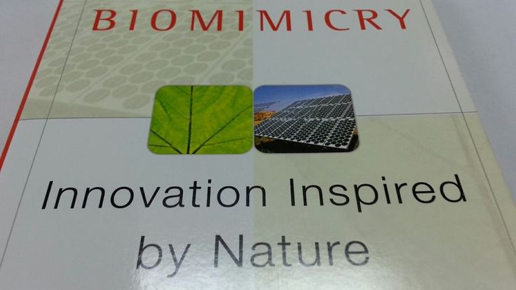 Biomimicry : Innovation Inspired by Nature by Janine M. Benyus
