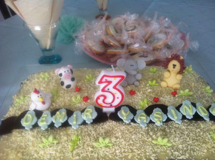 Doğum günü konsepti hayvanlar