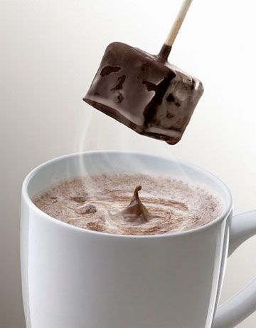 Gift ideas all under $20. Some you can even make yourself, like this Hot Chocolate Stick!