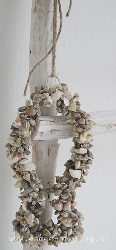 .great idea for the millions of shells i have !