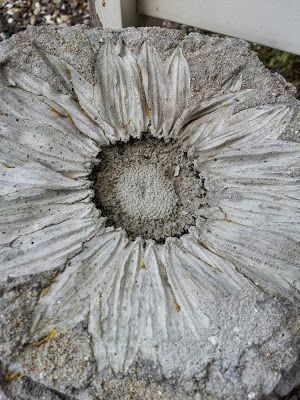 Mother bear ...: DIY - Sunflowers in concrete.  Must do this for Paul...
