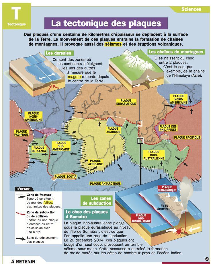Fiche exposés : La tectonique des plaques                                                                                                                                                      Plus