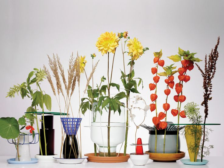 Chris Kabel's Hidden Vases. Photo by Mathijs Labadie for The Plant Journal.