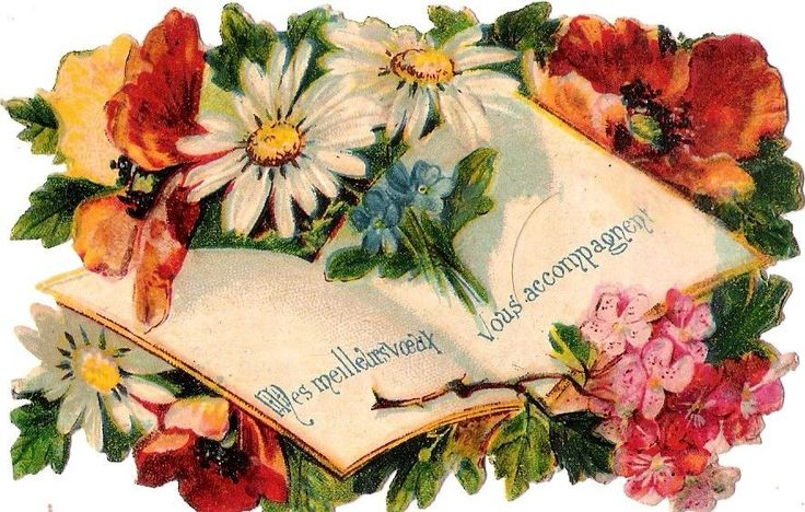 Oblaten Glanzbild scrap die cut chromo Buch book  Blume flower