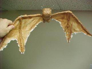 I shall make hundreds of bats!