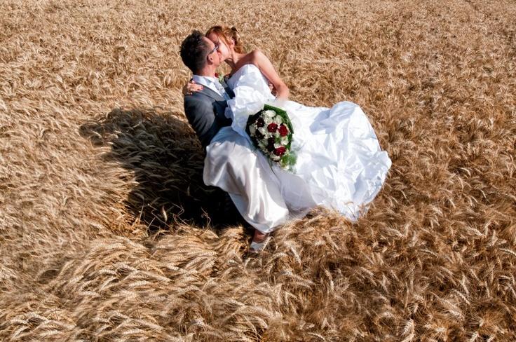 l'amore in un campo di grano