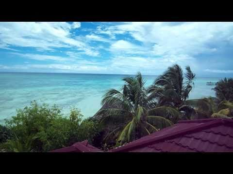 View from Mnarani Beach Cottages #Holiday #Zanzibar #EastAfrica #Nungwi #Lighthouse #Indian Ocean #PalmTrees #Nature #World #Travel