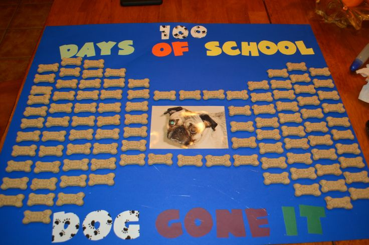 Poster ideas for school projects