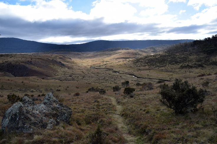 Kosciuszko National Park- Vast landscapes and endless stories to share.