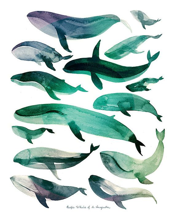 Pacific Whales of An Imagination Watercolor by CatherineLazarOdell