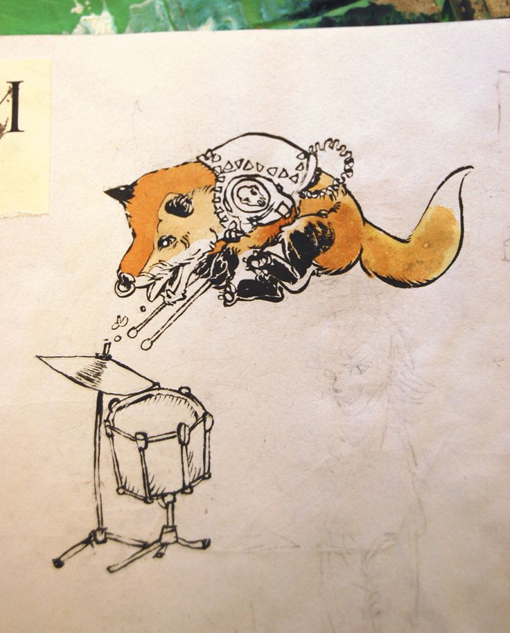 A punk rock drummer fox
