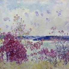 Багульник. Цветы Байкала