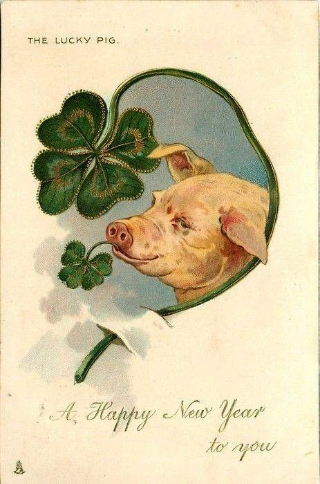 Открытка со свиньей на английском