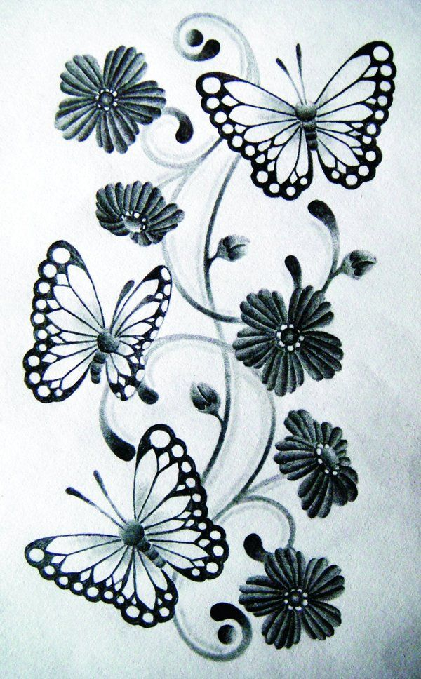 Butterfly drawings google search