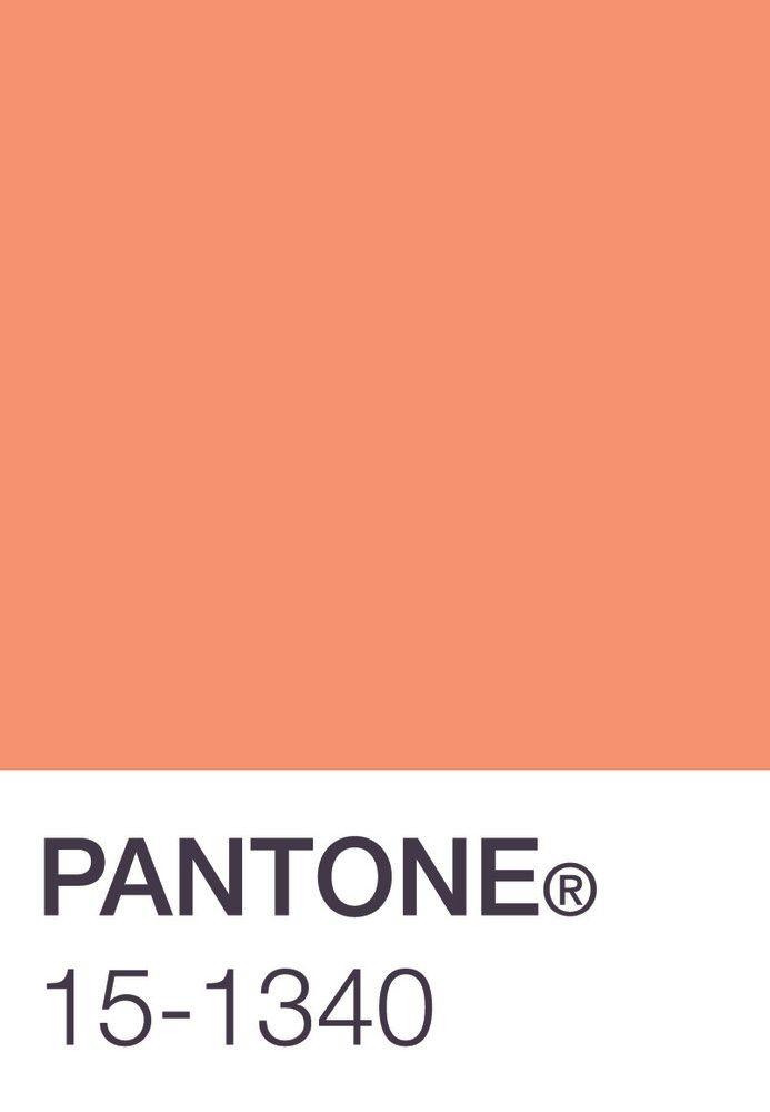 Pantone Peach Coral Pinterest Pantone Peaches And