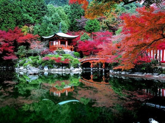 Autumn in Kyoto, Japan.  Totally want to go someday, well if i could get over the not enjoying traveling thing.