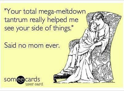 """Your total mega-meltdown tantrum helped me see your side of things.""    Said no mom ever."