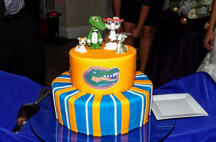 1000 Images About Uf Cake On Pinterest