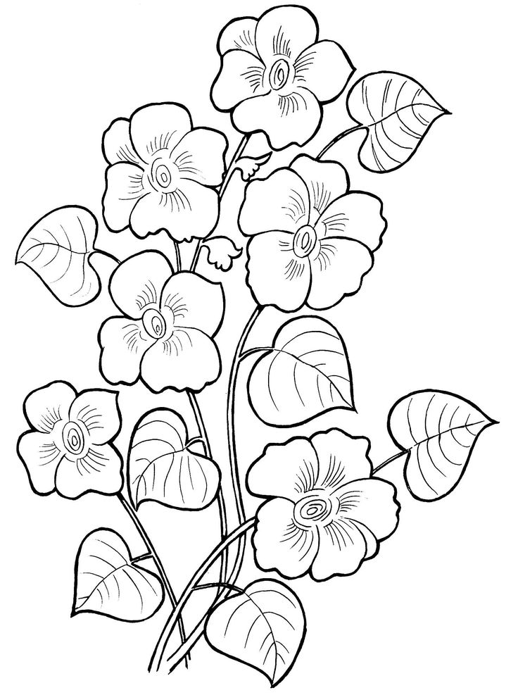 Beautiful Flower Coloring Pages Flower coloring pages